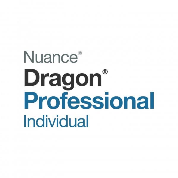 Dragon Professional Individual Logo